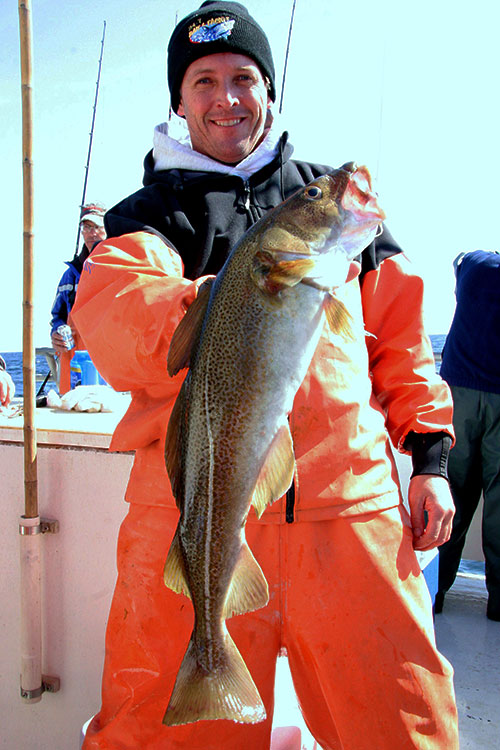 Market-sized cod are available on some of the deeper structures such as 17 Fathoms, the Klondike and Shark River Reef.
