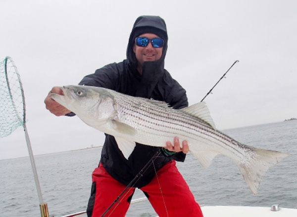 Mojo rigs allow fishermen to target deep stripers using big lures without wire line and heavy tackle.