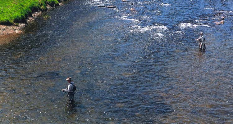 Anglers come from far and wide to fish for native brown and rainbow trout in the clear water of West Branch of the Delaware River.