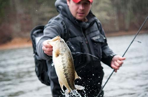 Catch your biggest bass of the season new sport fishing for Bass fishing season
