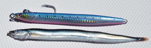 offshore sand lance