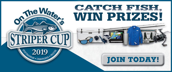 Sign Up For The 2019 Striper Cup!