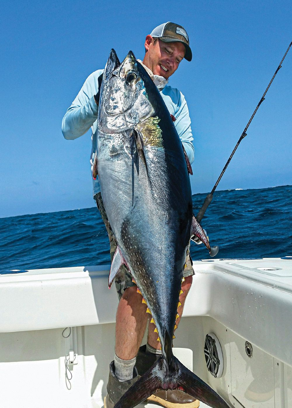 Tuned tactics improve the odds with SoCal bluefins.
