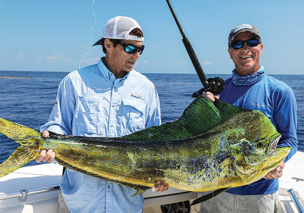 Big bull dolphin are often caught by crews offering multiple bait options.