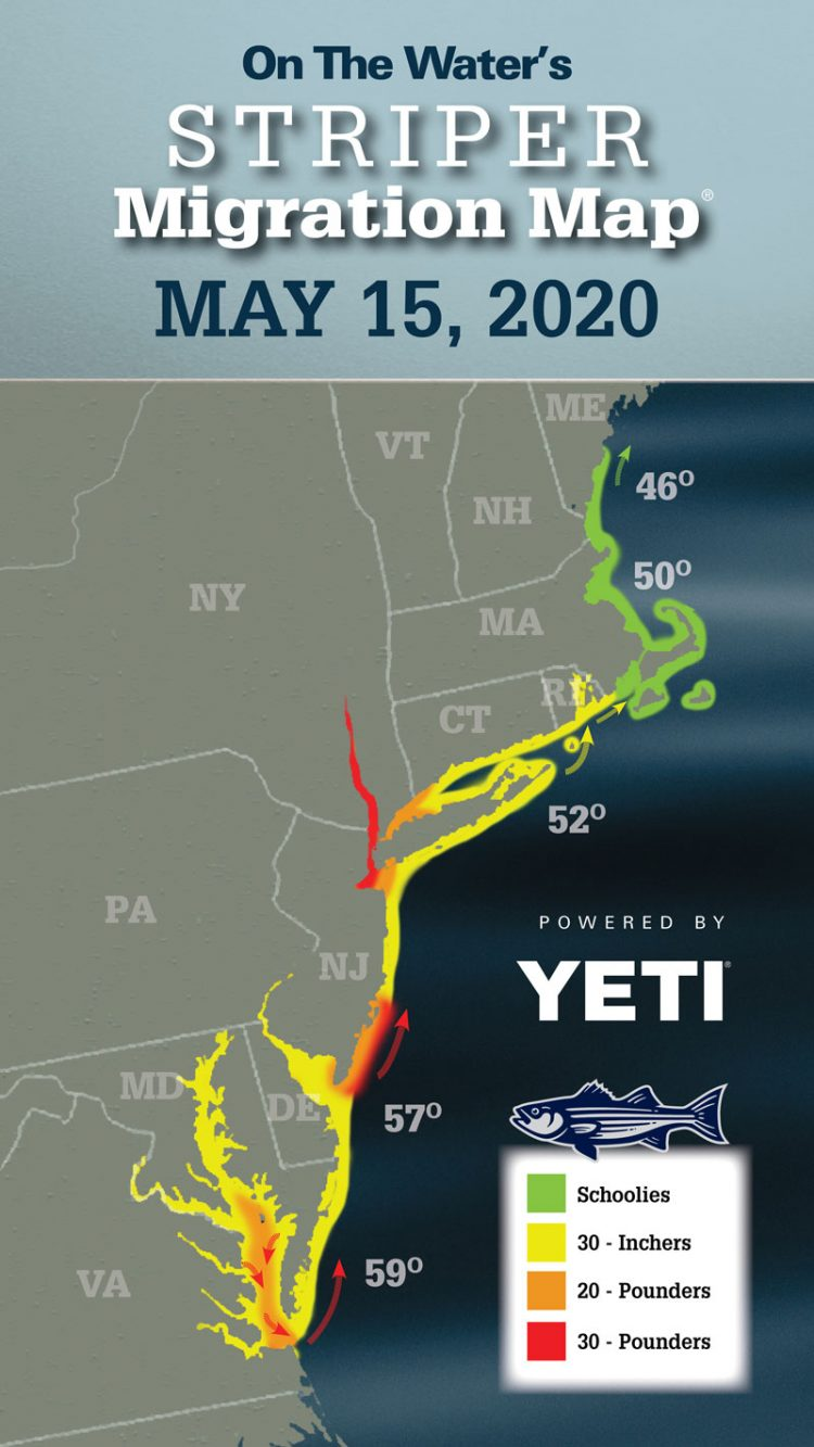 Striper Migration Map May 15, 2020