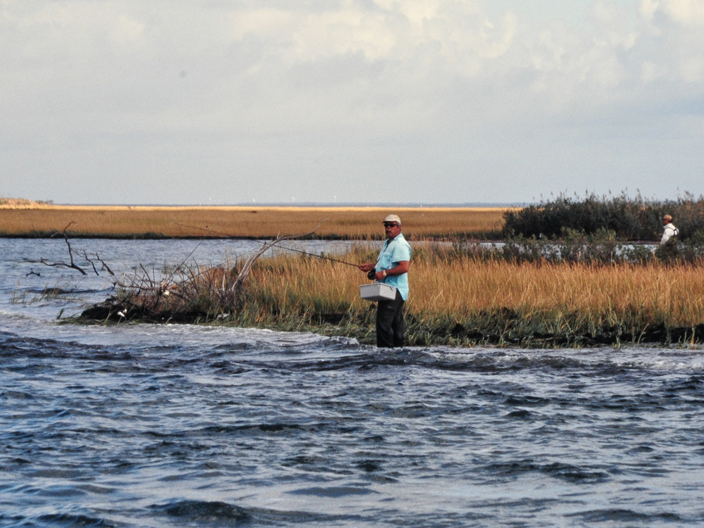Wading for stripers on the fly
