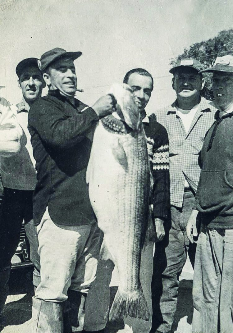 Linesiders Bass Club member Teddy Lima with his mid-50-pound striper caught from the surf in May of 1960.