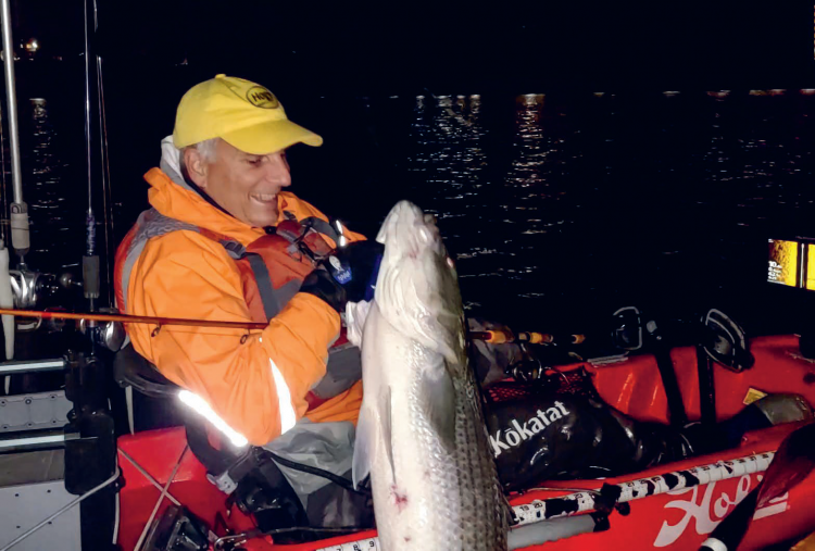 Night Striper Fishing